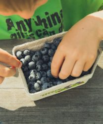 """<img src=""""child eating blue berries.jpg"""" alt=""""how to reduce obesity in children""""/>"""